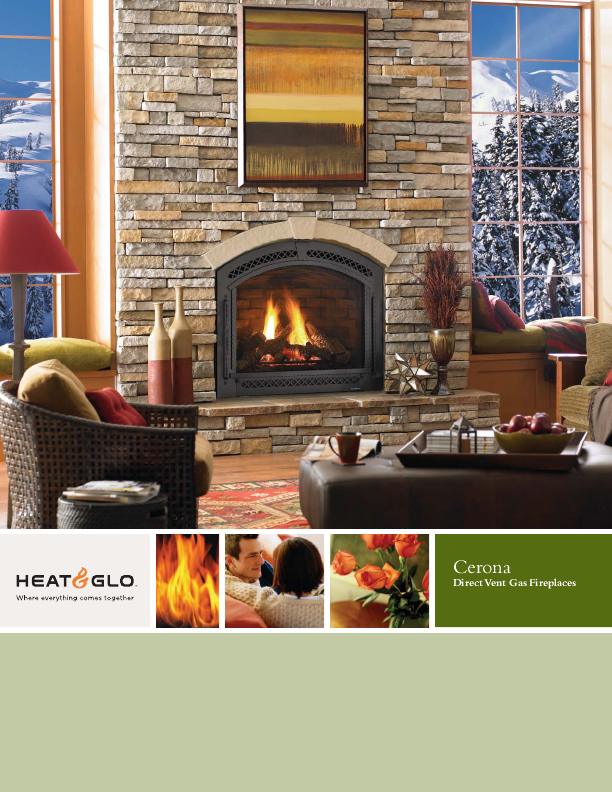 Gas Vented Indoor Fireplace Fireplaces